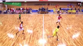 H26年 第23回JOCハンドボール大会香川VS岐阜(ダイジェスト)(男子予選リーグ)