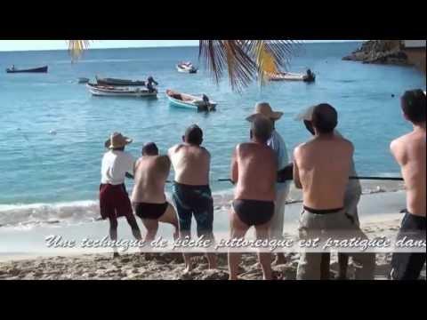 Martinique - Pêche à la senne à  Anse Dufour