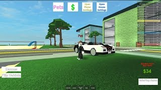 Roblox/ UNSAFEJAV703 #4 /driving a Bugatti veyron
