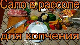 Рецепт 'сало в рассоле' или два в одном. Голодным не смотреть.🙆