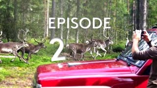 [2] Ambushed by Reindeers! | 4K Roadtrip Scandinavia 2016 (Lapland)