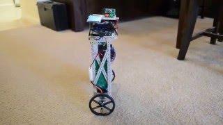 Raspberry Pi Balancing Robot - PiBBOT