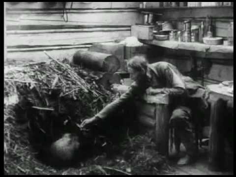 Grey Owl`s srange quest 1936 documentary