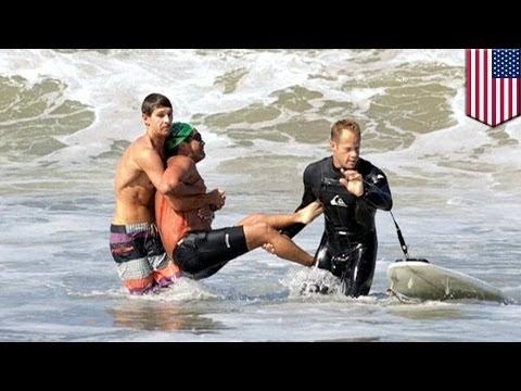 Great white shark attacks swimmer at Manhattan Beach near LA
