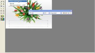 Урок 24  Додавання тексту до графічних зображень   5 КЛАС які не вивчали інформатику в 2 4 кл