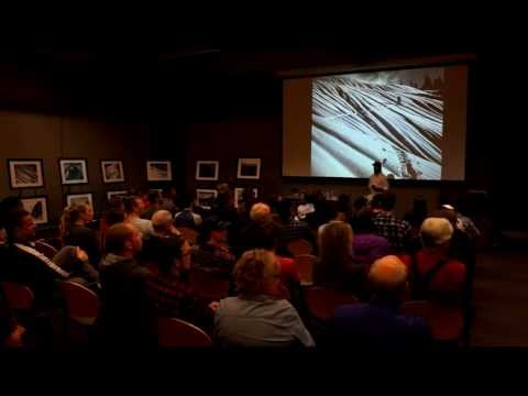 12 Months of Skiing - Slideshow Presentation - REI Seattle