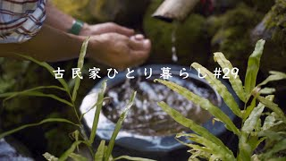 Solo camping deep in a mountain|Fuyushin Resort - a camp site in Matsuzaki-cho, Nishi Izu