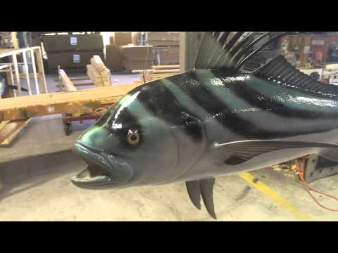 Roosterfish - Double Sided Fishmount From Gray Taxidermy