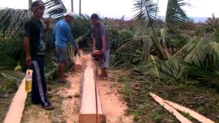 Cutting Coconut Lumber