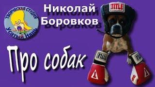 О собаках. Николай Боровков.Мульт #стих Какие бывают собаки.Деткам и малышам.