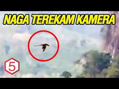 ADA DARI INDONESIA! 5 PENAMPAKAN NAGA YANG TEREKAM KAMERA !