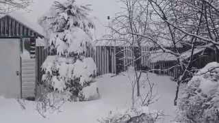 Так началась зима  (1 декабря 2014 г.) в г. Дальнереченске(, 2014-12-02T03:55:48.000Z)