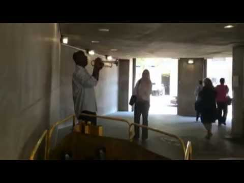 Incredible Trumpet Player Performs Jazz at the Metro