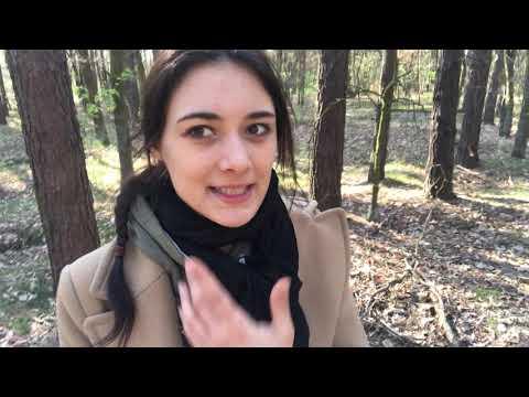Vlog #186 - Brand in Notre Dame...// Reaktionen, die wütend machen...