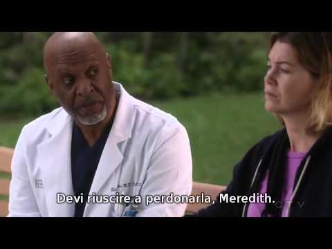 Meredith e Richard - Grey's Anatomy 12x09 Sub iTA