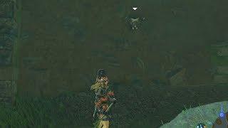 吸血するコウモリじゃなくて良かった(´∀`) #NintendoSwitch #ゼルダの...