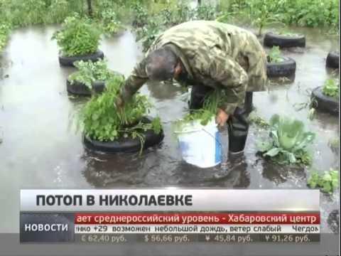 Потоп в Николаевке. Новости. GuberniaTV.