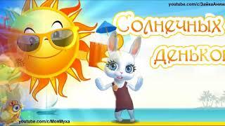 ZOOBE зайка  Пожелание Хорошего Дня и Удачи Пожелание на Каждый День
