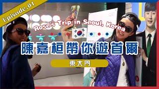 陳嘉桓帶你遊首爾 rose s trip in seoul 露絲遊記 1 of 19 東大門