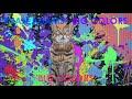 Capture de la vidéo Ryan Adams - Big Colors (Visualizer)