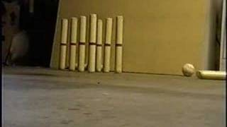 Wooden Pins - Bowling in the Basement...Alone