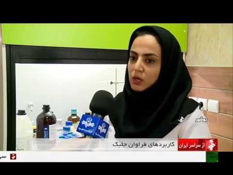 Iran project Vehicles Fuel production from algae پروژه توليد سوخت خودرو از جلبك ايران