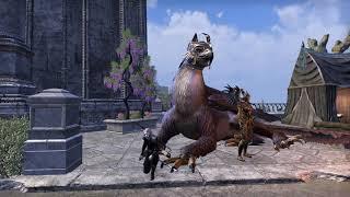 Набор в рейд Восточный Ветер^^ The Elder Scrolls Online