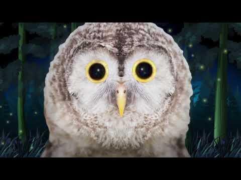 {Utau Cover}Equinox: Owl(+UST)