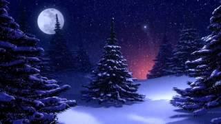 Очень красивая ёлка, Рождество, футаж, скачать бесплатно HD