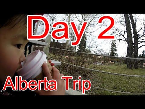 Alberta Trip:  Calgary Zoo Part 2 and Sophear Restaurant