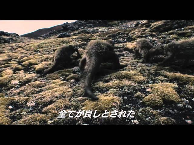 映画『ノア 約束の舟』ダーレン・アロノフスキー監督の創世記|シネマ ...