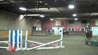 Rocking Horse Stables Clinic - Shelly Wampole Instructing
