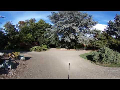 Kubota Park Fall Leaves 360 Video Tour SeattlePI.com