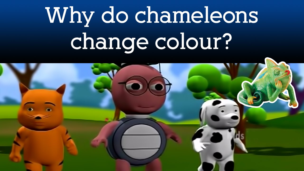 how to make a chameleon change color
