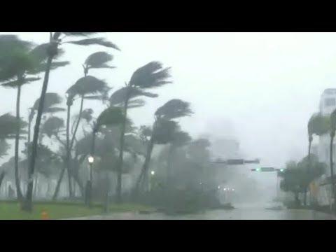 Hurricane Irma: Miami drivethru