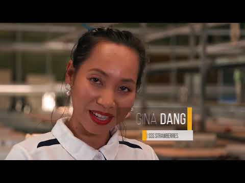 SSS Strawberries   Industry Leaders S04   Television Segment   Part 1