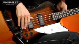 Epiphone Thunderbird-IV Bass (Jaryn Janek)