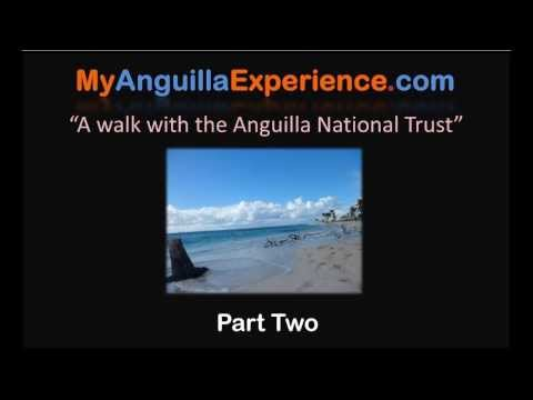 A Walk with the Anguilla National Trust - Part Two -  Merrywing Bay