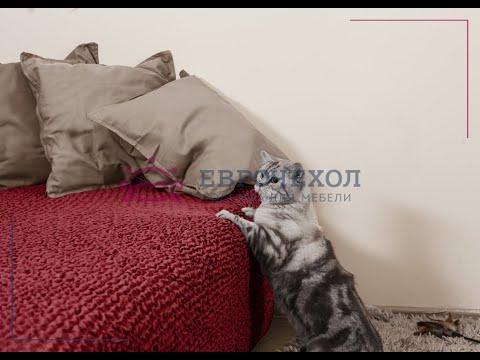Магазин ЕВРОЧЕХОЛ в СПб