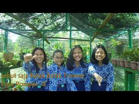 SMP Negeri 1 Pulau Rakyat #saynotosaos