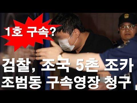 검찰, 조국 5촌 조카, 조범동 구속영장 청구(사유) [RNB, 레지스탕스TV, 정광용TV]