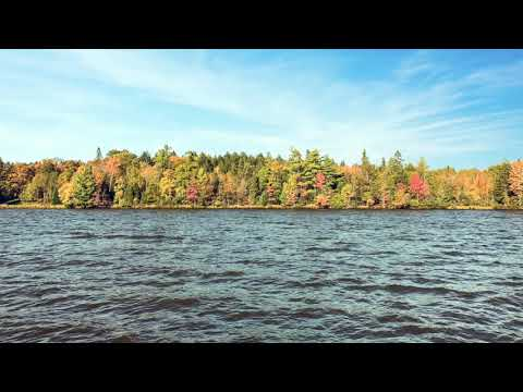 Catfish Lake Lot