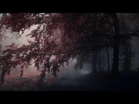 Insomnium - Neverlast