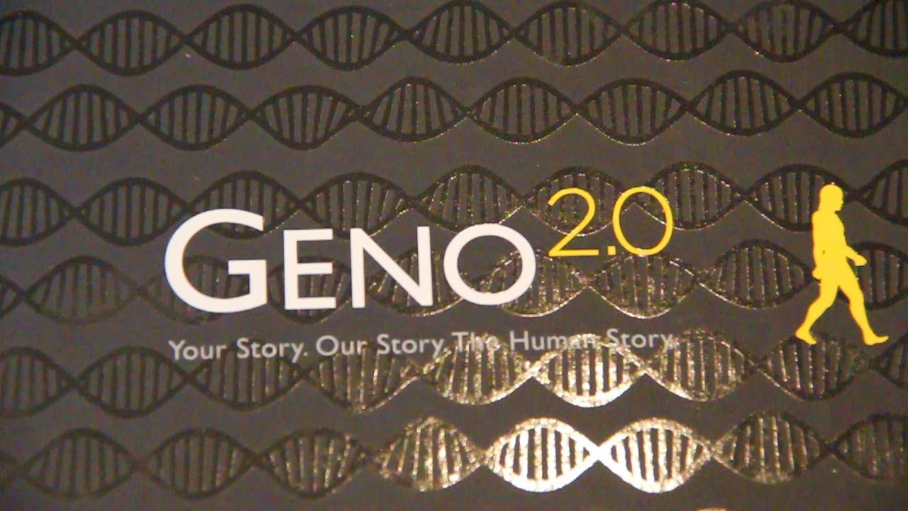national geographic geno project Ibm and national geographic are mounting the genographic project, an  ambitious five-year study that will use the largest collection of dna samples ever .