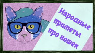 Народные приметы про кошек - кошка - примета - кошки
