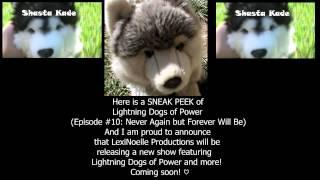 Happy 1 Year Anniversary Lightning Dogs Of Power! ϟ