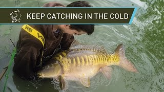 Carp Fishing - Keep Catching In The Cold!