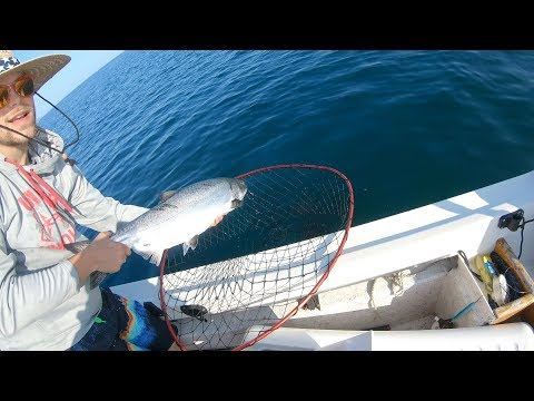 Port Angeles,WA King Salmon Fishing Trip