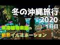 【沖縄旅行】夫婦で予算1万円!お得に楽しむおすすめ沖縄デートコース【Vlog】