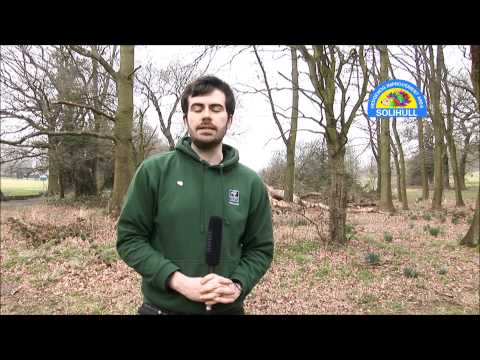 An Interview with Simon Thompson,  Hedgehog Officer (extended version)